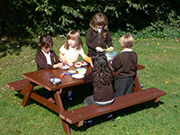 Delux recycled plastic picnic table for schools